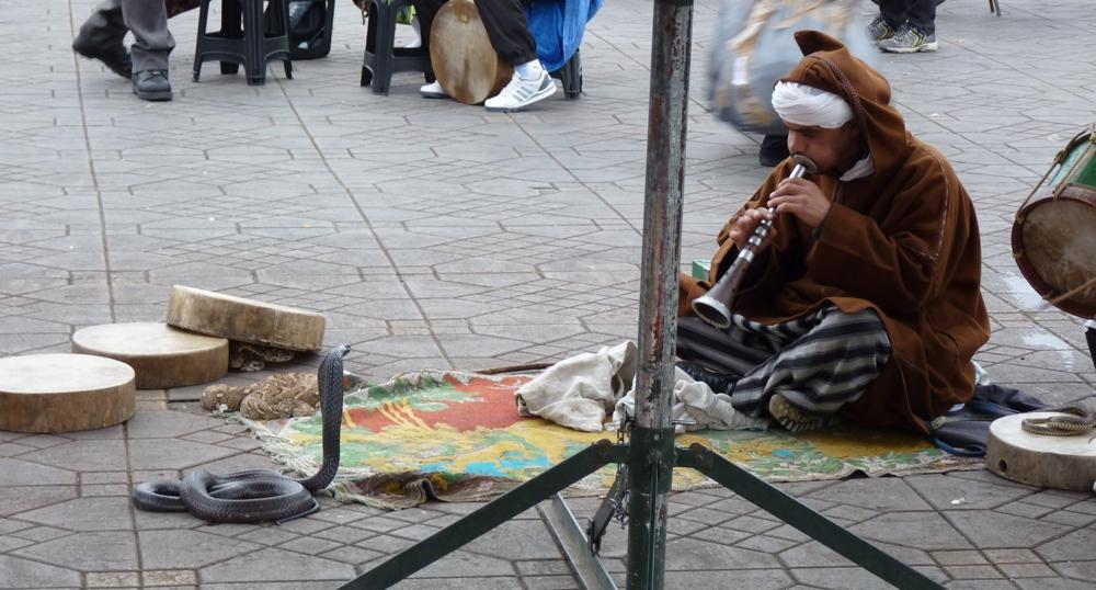 Charmeur de serpent sur la place Jemaa El Fna