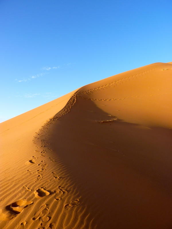 Voyage dans le désert marocain