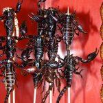 Scorpions au marché de Donghuamen à Pékin