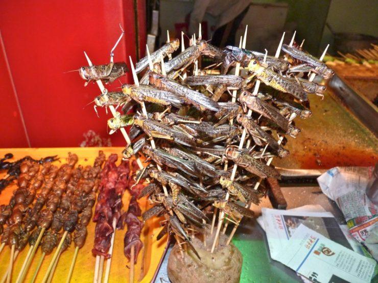 Brochettes d'insectes à Pékin