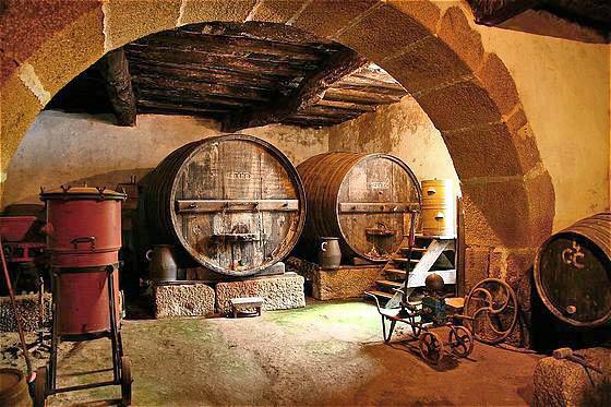 Cave à vin vallée du douro porto