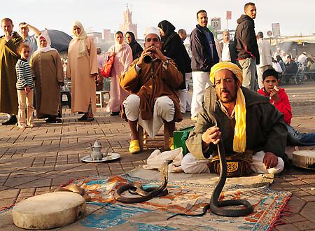 Pourquoi je vais boycotter Marrakech