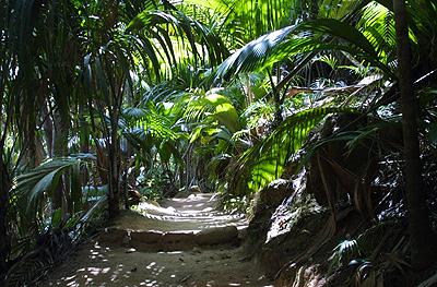 trekking seychelles