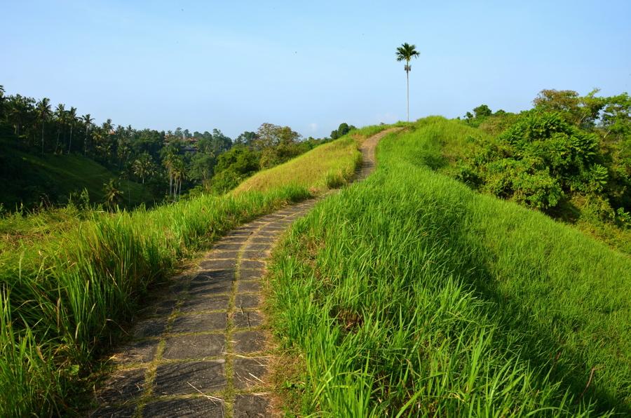 Camphuan près d'Ubud à Bali