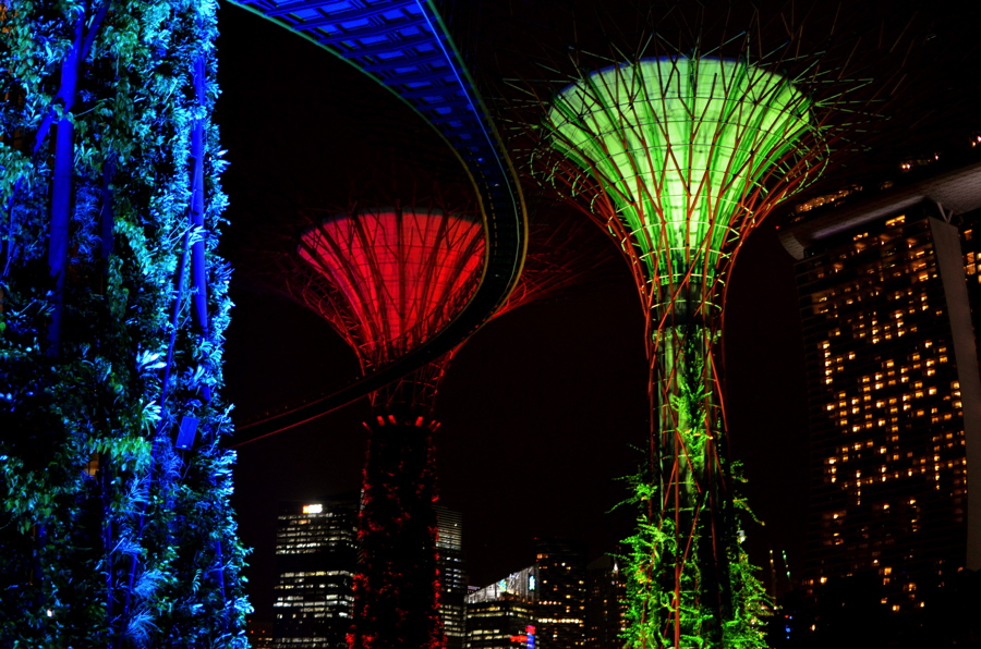 Gardens by the Bay by night