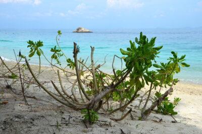 Plage des îles Perhentian