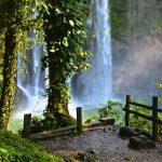 Cascade Misol Ha dans les Chiapas