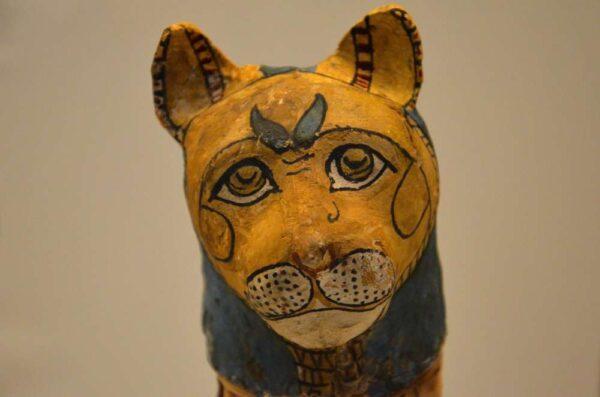 Momie de chat - Expo Des animaux et des pharaons