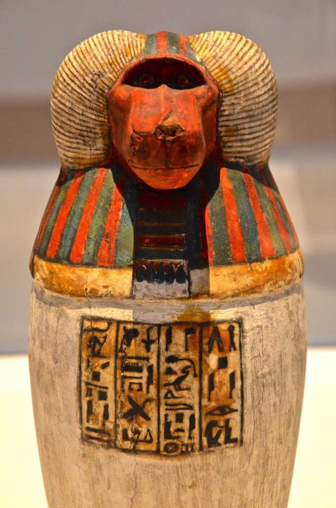 Vase canope - Expo Des animaux et des pharaons