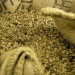 Café vert non torréfié