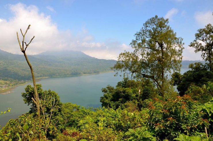 Panorama à Kintamani