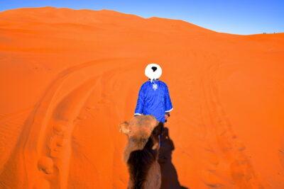 Balade en chameau dans le désert