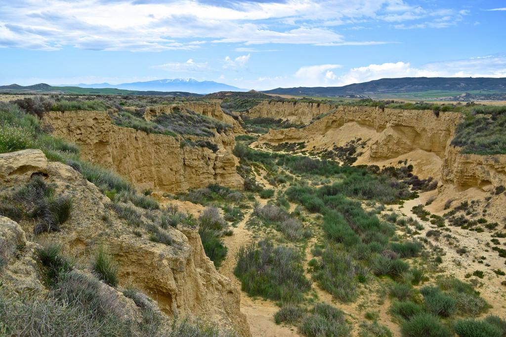 Canyon dans le désert des Bardenas