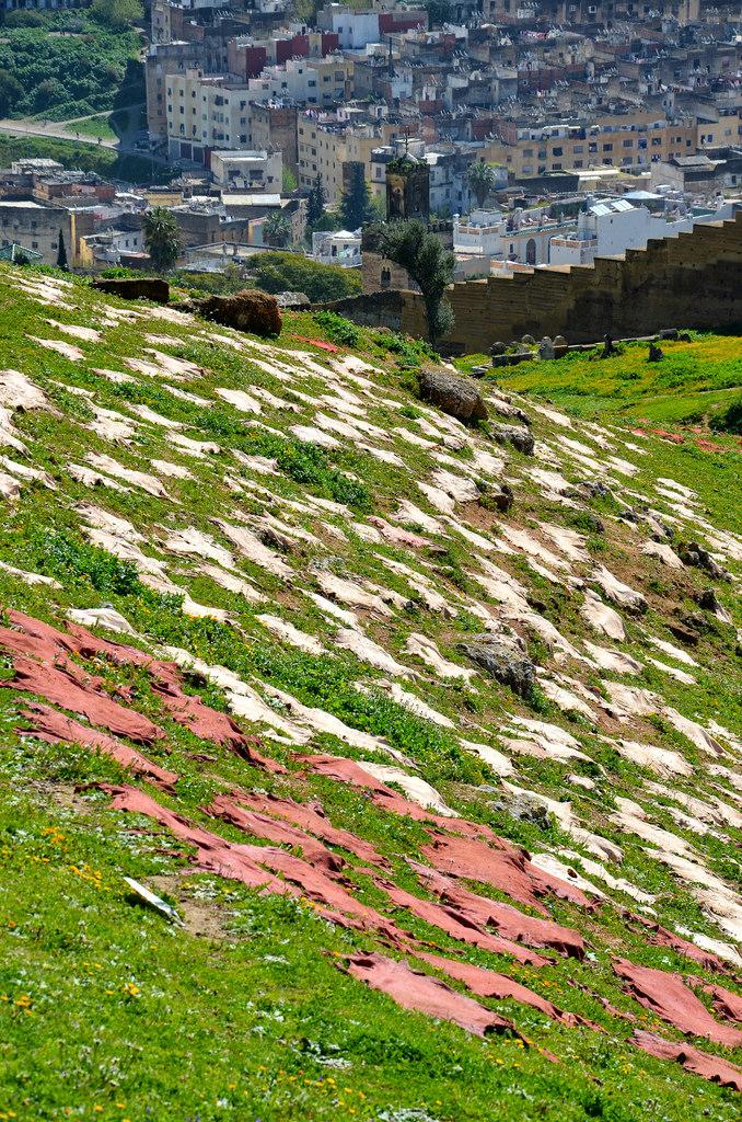 Peaux au soleil près des tombeaux mérinides à Fès