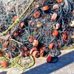 Filets de pêche à Campeche