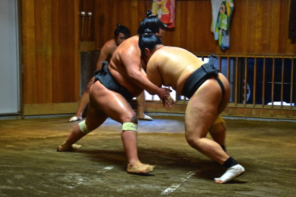 Entraînement de sumo à Tokyo