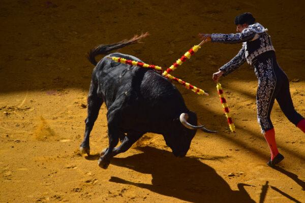Corrida à Saragosse en Espagne