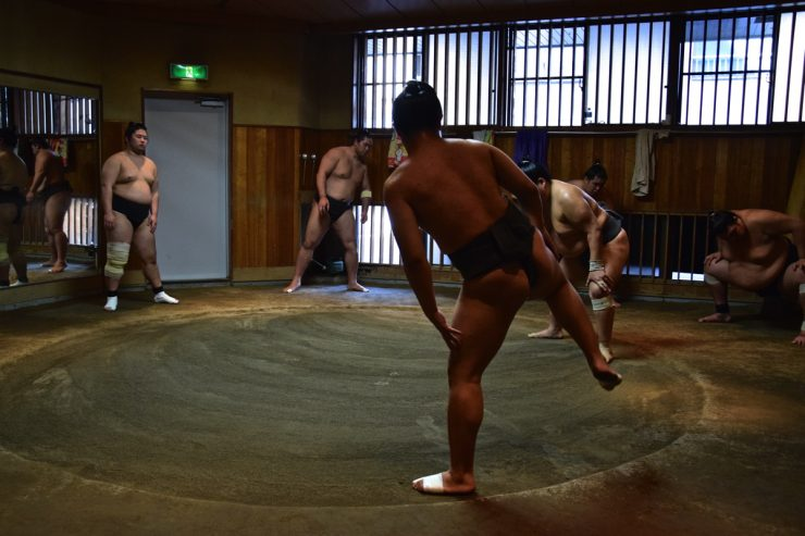 Training session - Sumo