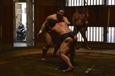 Rikishi à l'entraînement