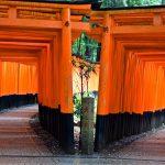 Double allée de torii à Kyoto