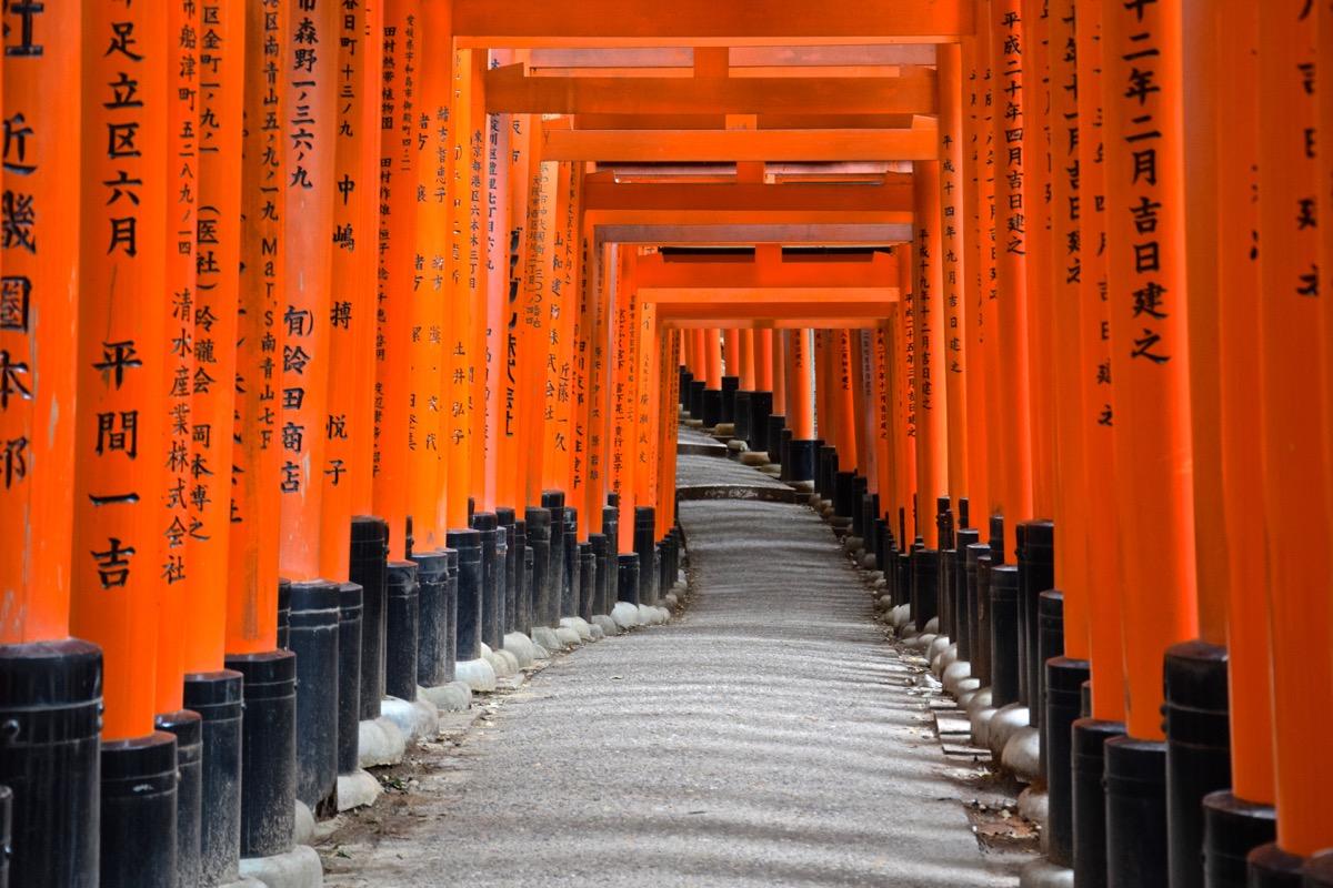 Montée vers le sommet du mont Inari