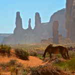 Cheval à Monument Valley
