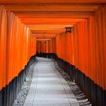 Allée de torii à Kyoto