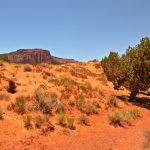 Wildcat trail à Monument Valley