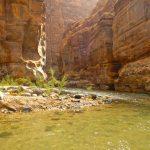 Wadi al Mujib