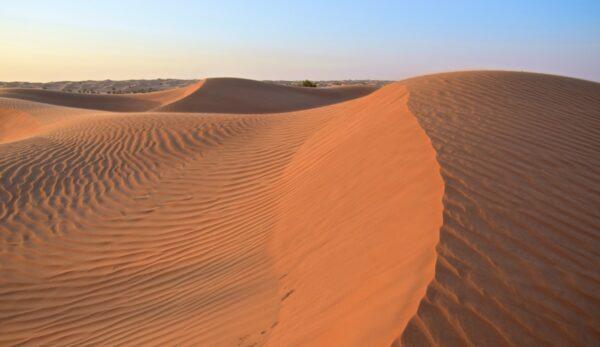 Carnet de voyage aux Emirats arabes unis