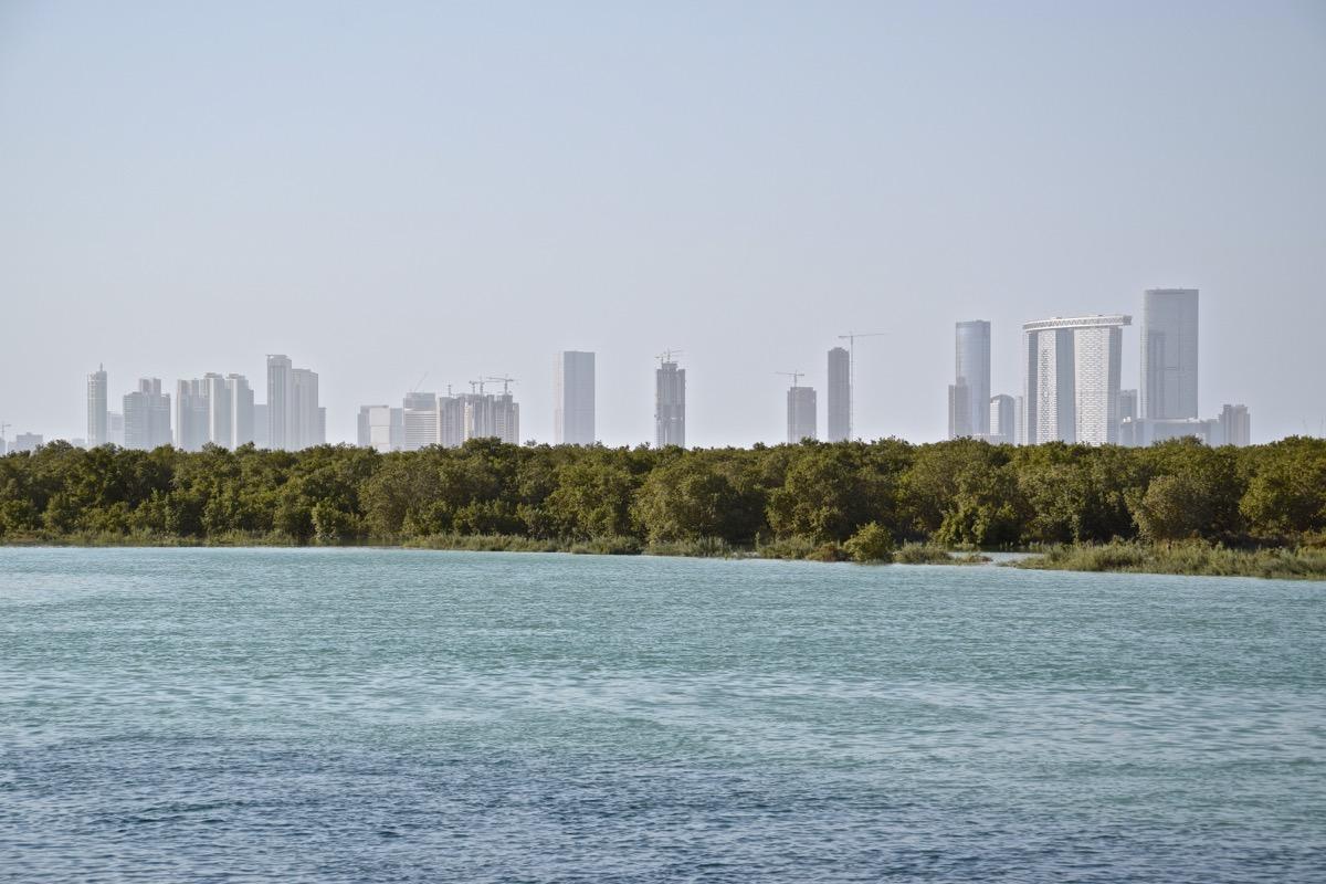 Mangrove & skyline d'Abou Dhabi