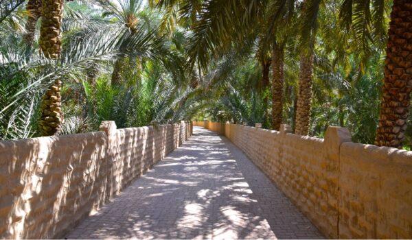 L'oasis d'Al Aïn, la magnifique oasis de la ville d'Al Ain aux Emirats