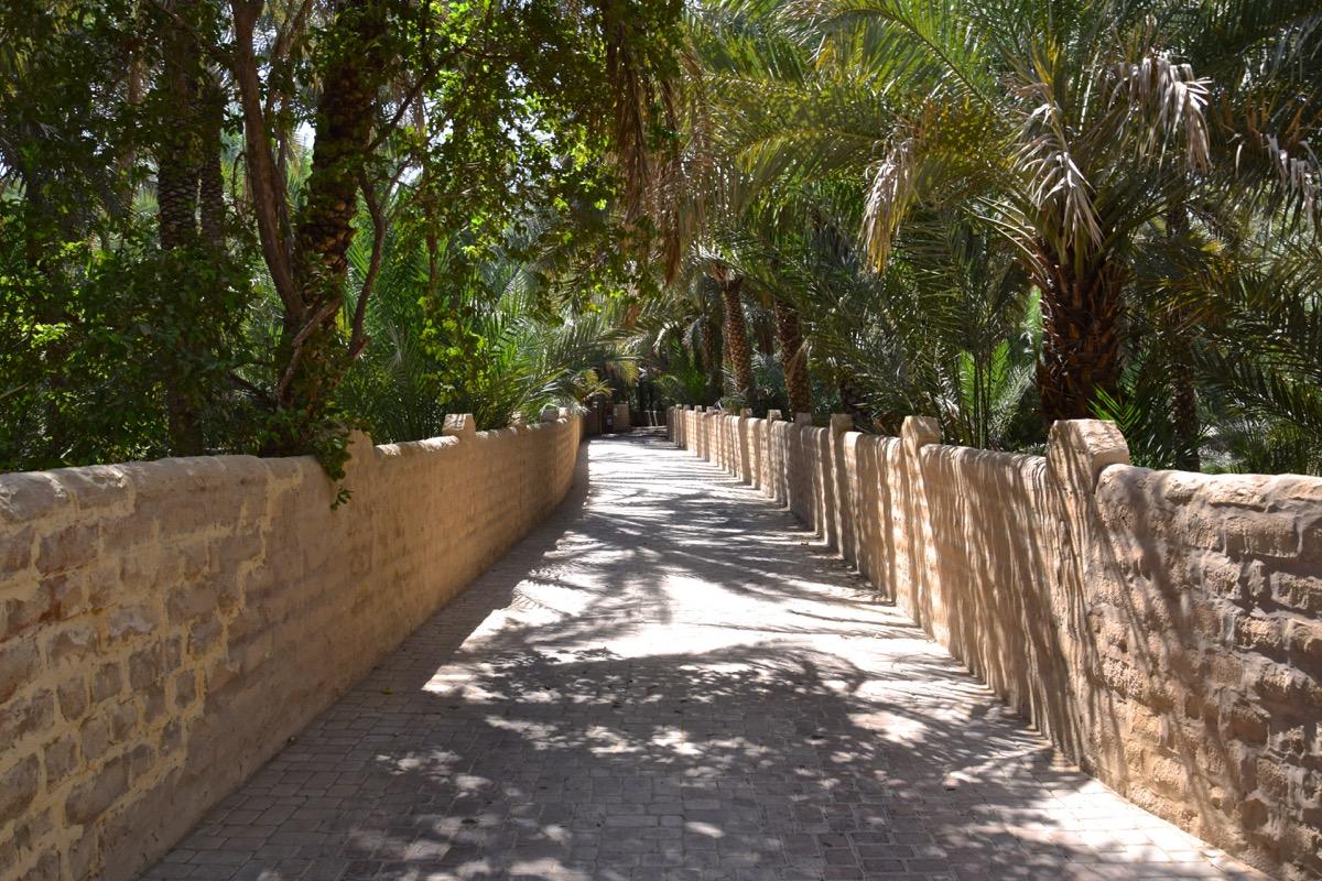 Oasis d'Al Aïn aux Emirats arabes unis