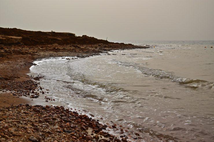Baignade dans la mer Morte