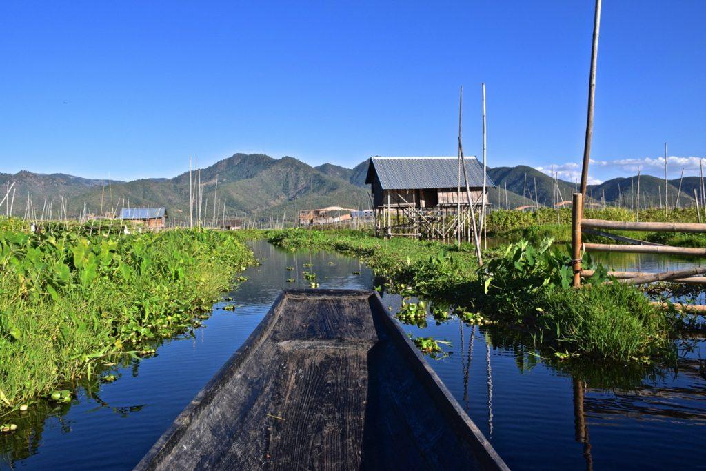 Pirogue dans les jardins flottants du lac Inle en Birmanie