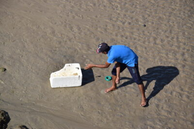 Pêcheur à Sour, Oman