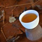 Welcome drink: tea!