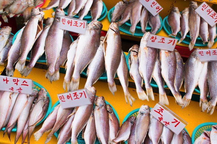 Jagalchi fish market - Busan