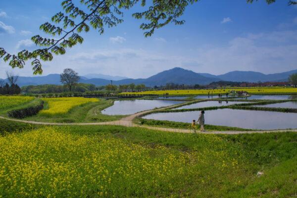 Gyeongju - Corée du Sud