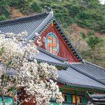 Bâtiment du temple Haeinsa