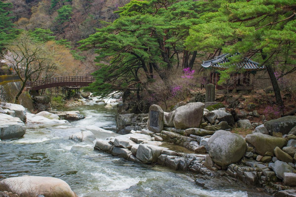 Dans le parc du temple Haeinsa