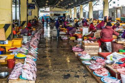 Marché de Jagalchi à Busan