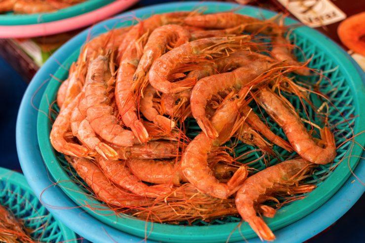 Crevettes au marché de Jagalchi - Busan