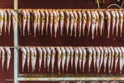 Dried fish - Jagalchi market