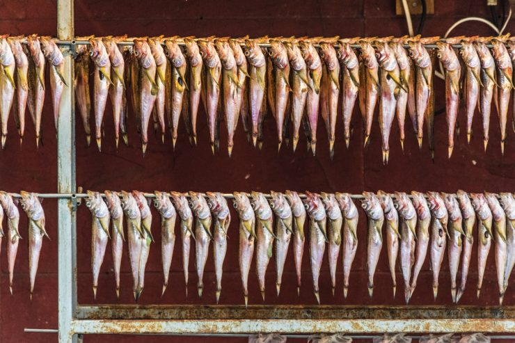 Dried fish - Jagalchi market