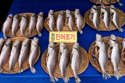 Marché de Jagalchi - Busan, Corée du Sud