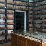 Réserves du Museo Larco de Lima