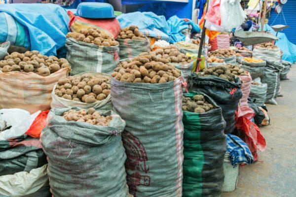 Pommes de terre au marché d'Urubamba