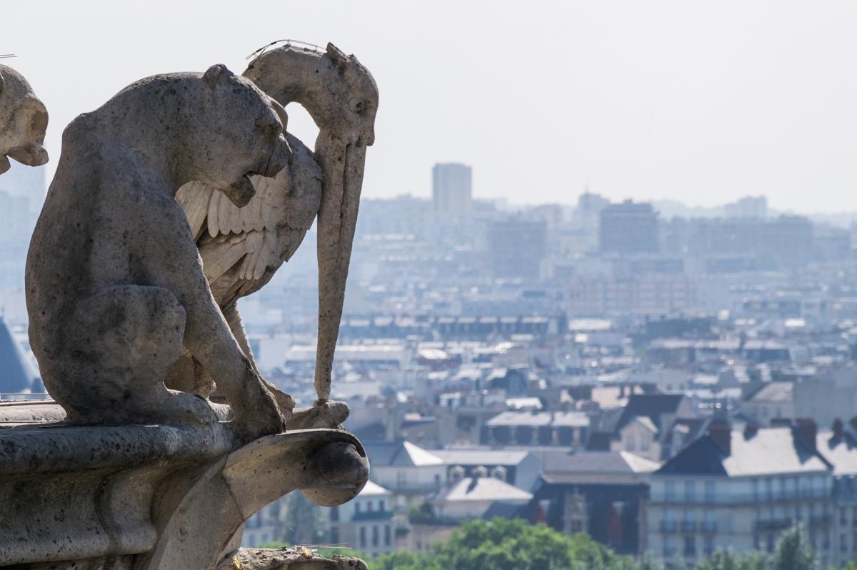 Sculpture chimérique au sommet des Tours de Notre-Dame de Paris