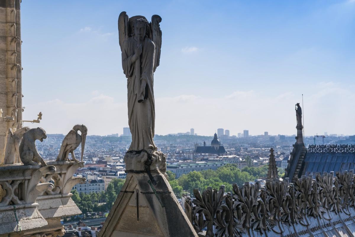 Sur les toits de Notre-Dame de Paris